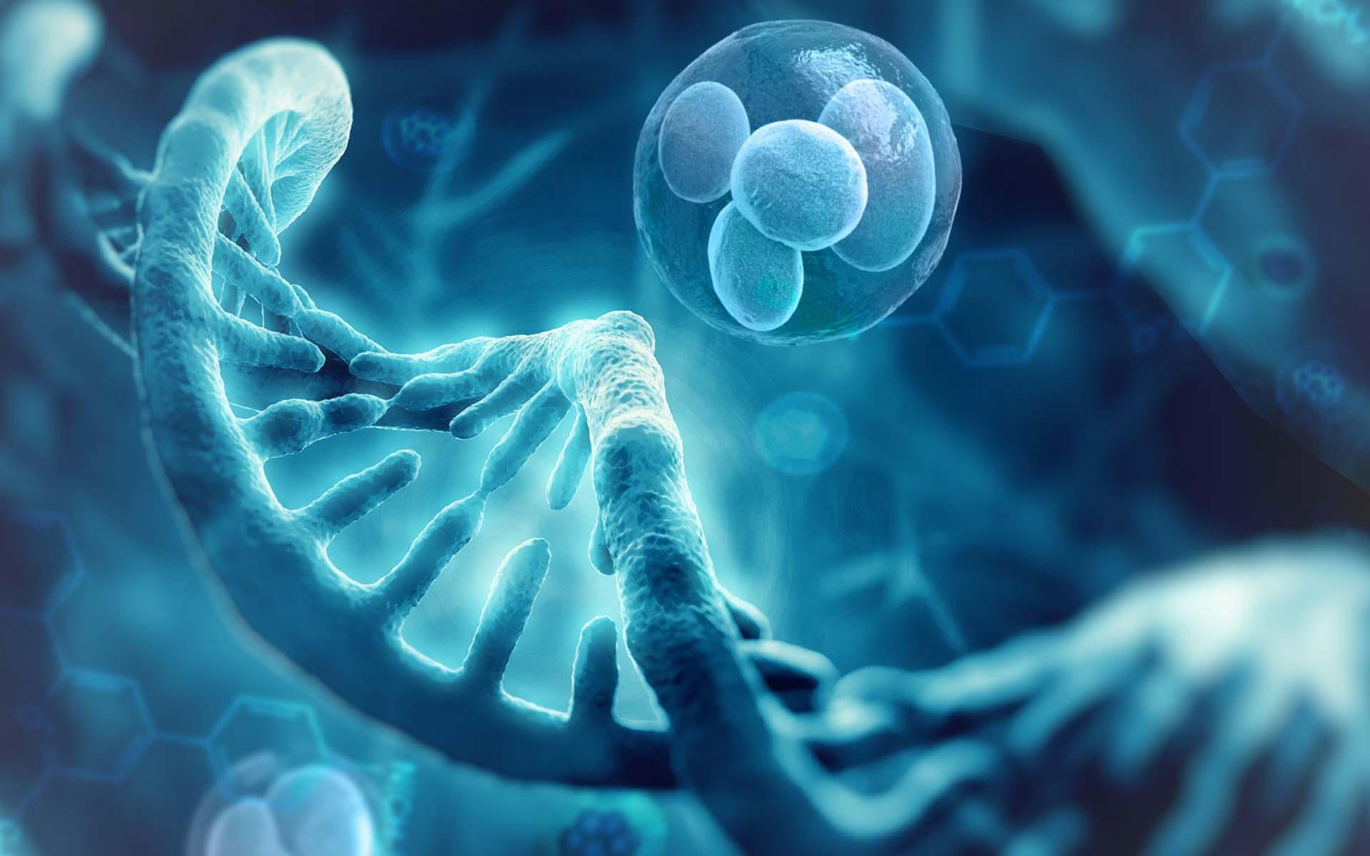 Câncer Familiar e aconselhamento genético